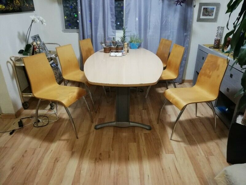 Comedor o sala de juntas para 6 personas