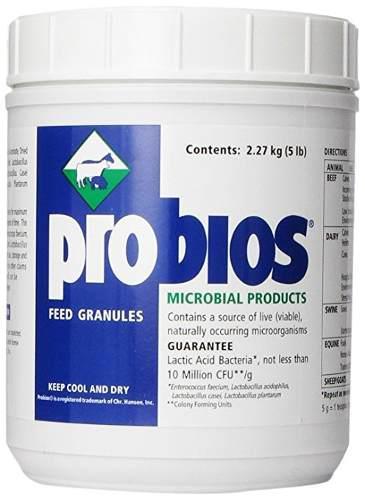 Vets Plus Probios Alimentar Granulado Para Los Caballos, 5 L