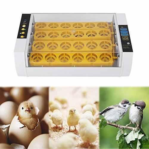 Incubadora Para Huevos, Pantalla Para Humedad Y Temperatura