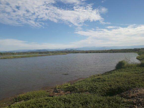 se vende terreno en san miguel municipio de rosamorada