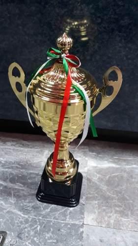 Copa Trofeo Premio Estatuilla Copa Dorada 45cm Deportes