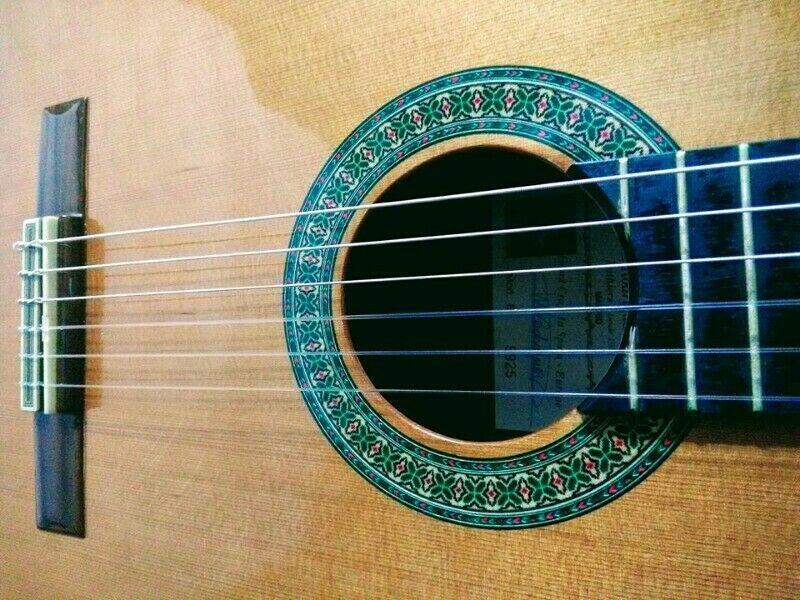 Clases de Guitarra Clasica y Guitarra Electrica Particulares