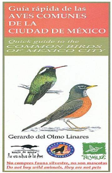 GUIA RAPIDA DE LAS AVES COMUNES DE LA CIUDAD DE MÉXICO