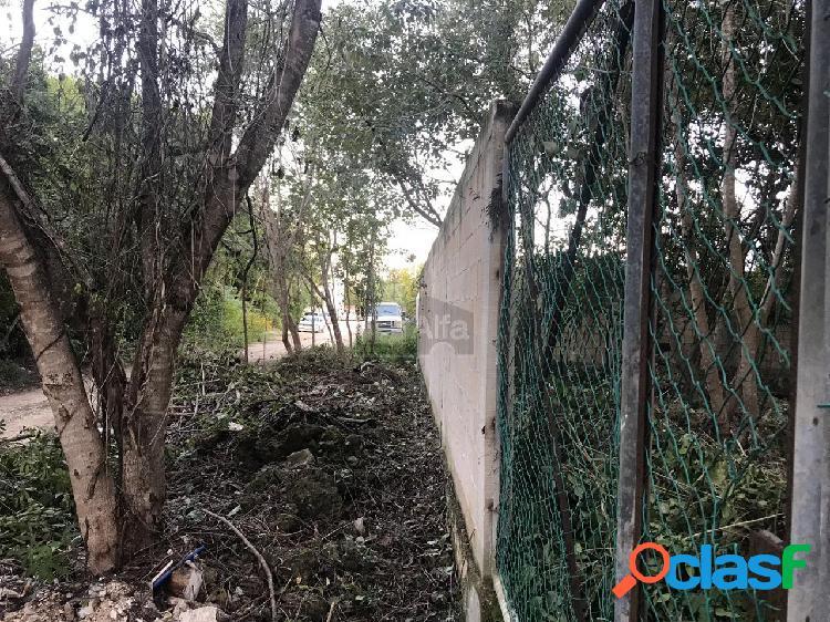 Venta de 2 terrenos en Cancun Quintana Roo