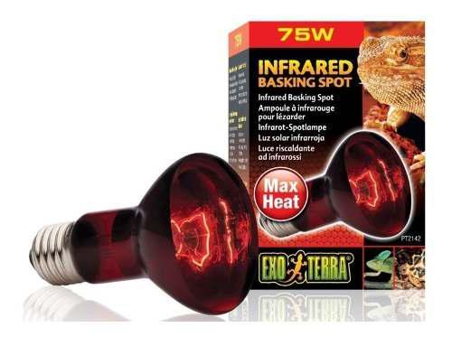 Foco Lámpara Infraroja Infrared Spot 100w Terrario Exoterra