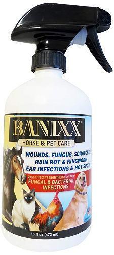 Banixx Caballo Y Del Cuidado De Animales