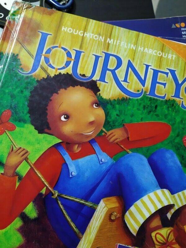Libro usado Journeys 2.1