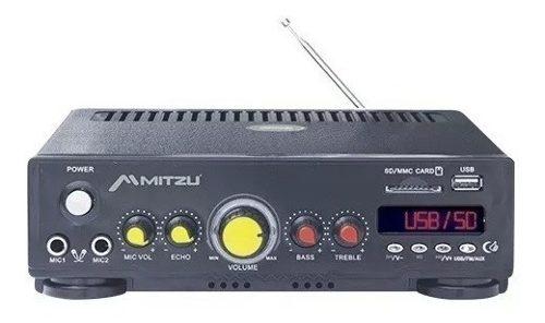 Amplificador Sonido Ambiental Perifoneo Difucion Usb/sd Auto