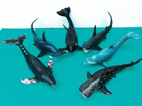 Set De 6 Piezas, Tiburon, Ballena, Delfin, Pez