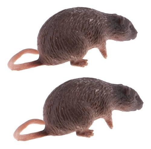 1/6 Ratón Modelo De Rata Miniatura Para 12 '' Figura De Acc