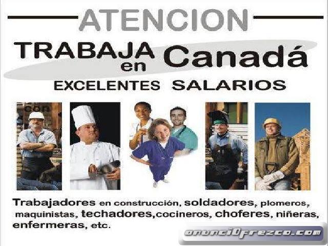 Se Solicita Personal Para Trabajar En Canada