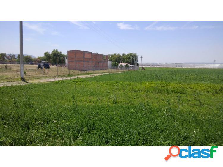Rancho especializado para cultivo y ganadería.