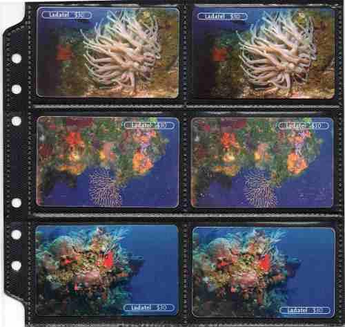 Tarjetas Telefonicas Serie Año De Los Arrecifes