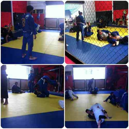 Tatami Para Muay Thai, Judo, Jiu Jitsu, Grappling, Mma.