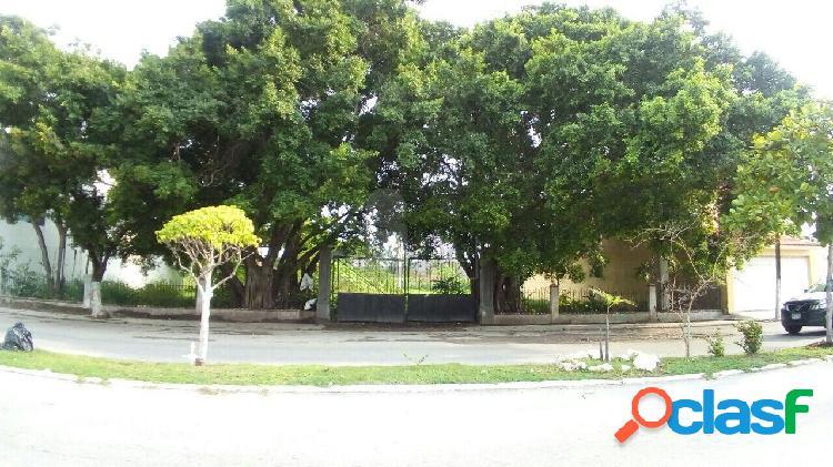 Terreno comercial en renta en Miami, Carmen, Campeche