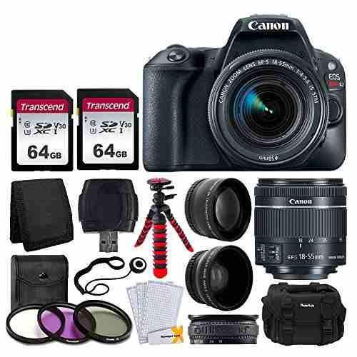 Cámara Canon Eos Rebel Sl2 Digital Canon Y Kit De