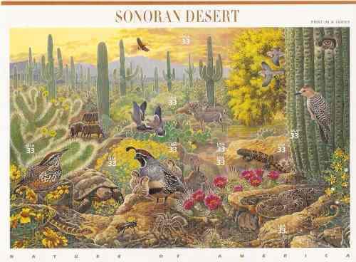 1999 Estados Unidos Desierto Sonora Hoja Souvenir Fauna Mnh