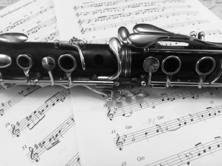 Clases de clarinete a domicilio