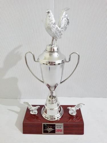 Trofeo Deportivo Gallo Copa