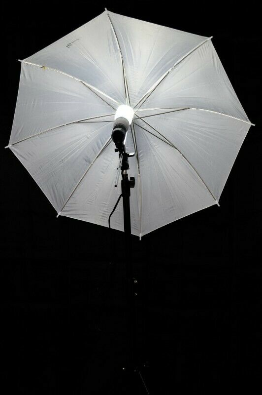 朗kit sombrillas, luz continua para fotografía y