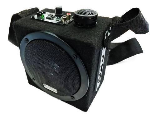 Amplificador Portátil Mini Bluetooth Lector Usb Y Radio Fm