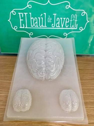 Molde Para Gelatina En Forma De Cerebro Grande Y Chiquitos