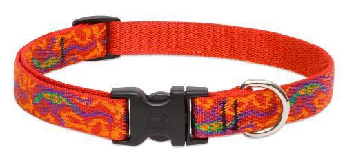 Lupine 3/4 Inch Go Go Gecko Adjustable Dog Collar For Small
