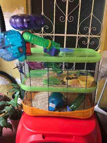 Jaula iMac Modelo Fantasy Para Hamster Y Accesorios