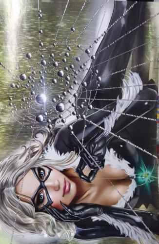 Black Cat No. 1 Variant Cover Greg Horn