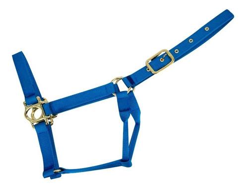 Almartigon Para Caballo Americano Azul