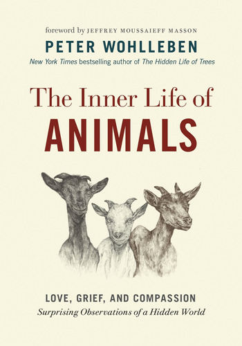 Libro The Inner Life Of Animals: Love, Grief, And Compassi