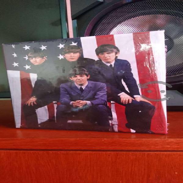 The beatles cds