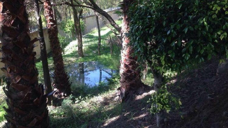 Terreno en Venta en Lomas de Angelópolis I Puebla