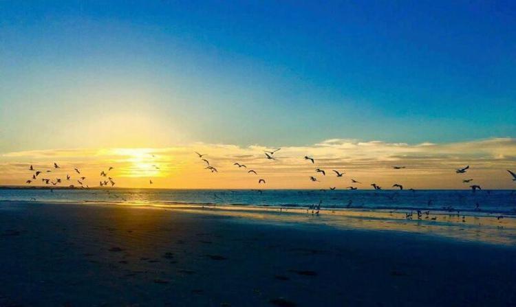 Se vende 50 kilometros de Playa en Baja California Sur La