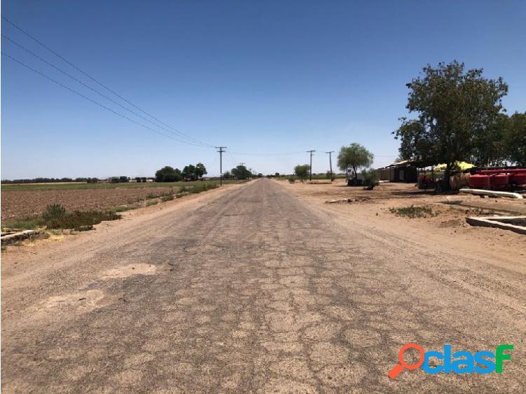 14 hectáreas para siembra con permiso de Riego