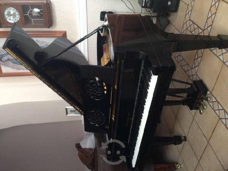 Espectacular piano de cola Steinway & Sons HAMBURG