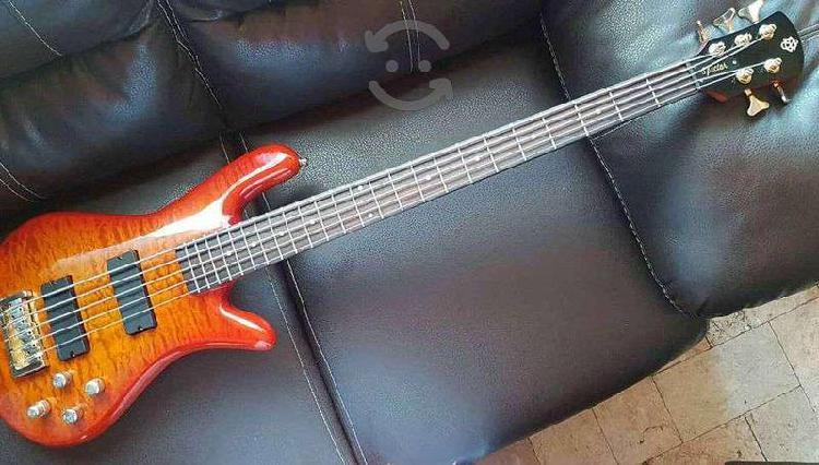 Spector bass custom 5 (de lujo)