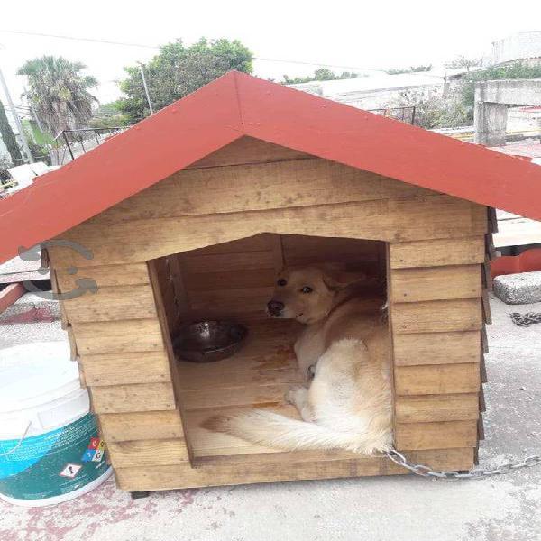 Se vende casa grande de Perro de Madera