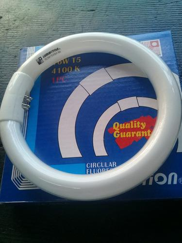 Tubo Circular T5 16w