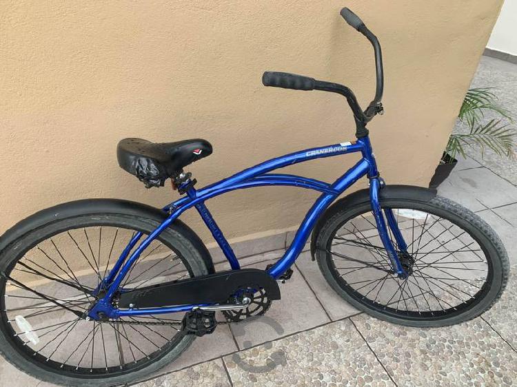 Bicicleta Tipo Vintage Rodada 26