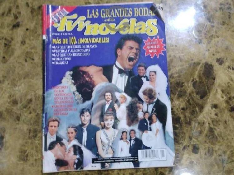 Revista especial TVyNovelas Boda de las Estrellas