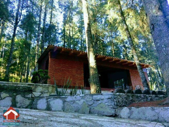 Terrenos en Venta en el Bosque para tu Cabaña camino a