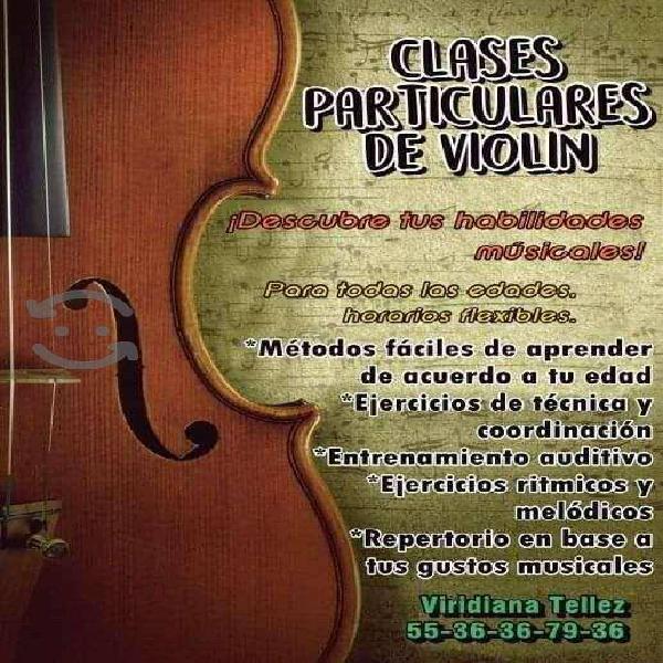 Clases de violín vía zoom