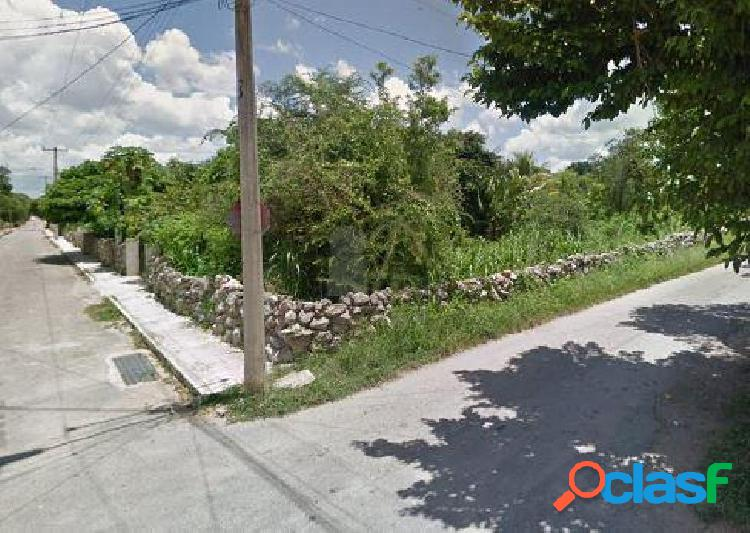 Terreno en Renta Sitpatch, Yucatan, uso de suelo mixto,