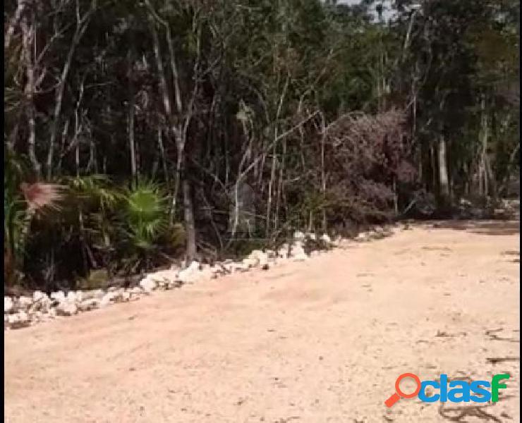 Terreno en venta en Tulum